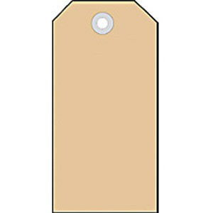 Anhängezettel 35x60mm mit Kunststofföse 1000St 1Pack