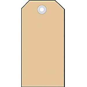 Anhängezettel 48x95mm mit Pappöse 1000St 1Pack